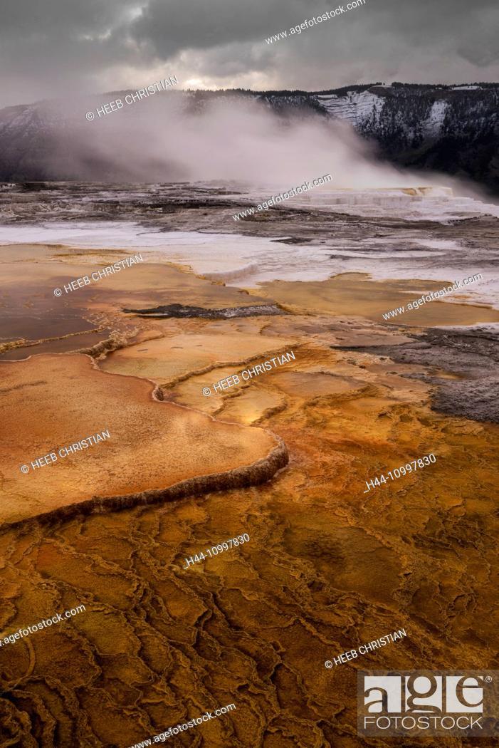 Imagen: USA, Rocky Mountains, Wyoming, Yellowstone, National Park, UNESCO, World Heritage, Mammoth Hot Springs.
