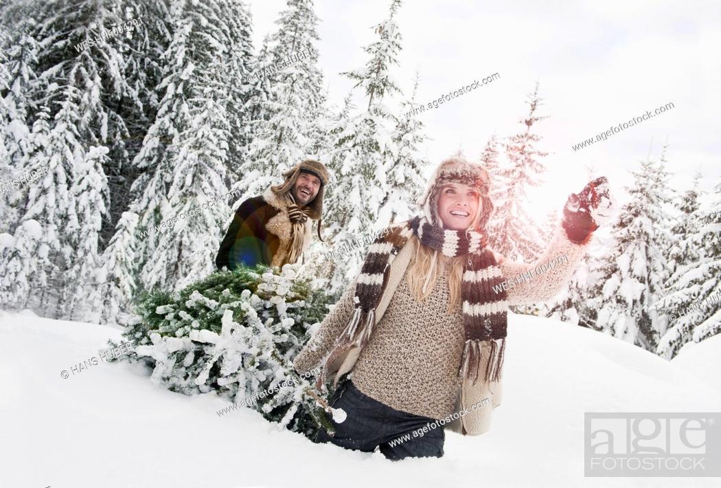 Stock Photo: Austria, Salzburg County, Couple pulling christmas tree in winter landscape.