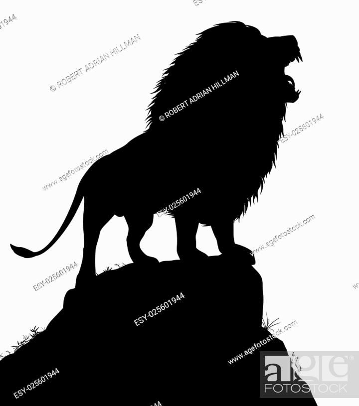Vector: Editable vector silhouette of a roaring male lion standing on a rocky outcrop with lion as a separate object.