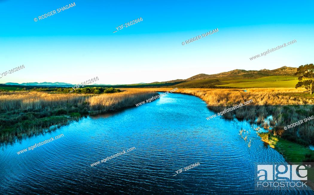 Stock Photo: Calm with a slight breeze causing a light ripple on the river water. Bot River, South Africa.