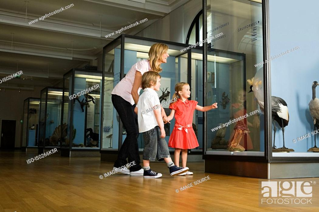 Stock Photo: Mother and children looking at a museum exhibit.
