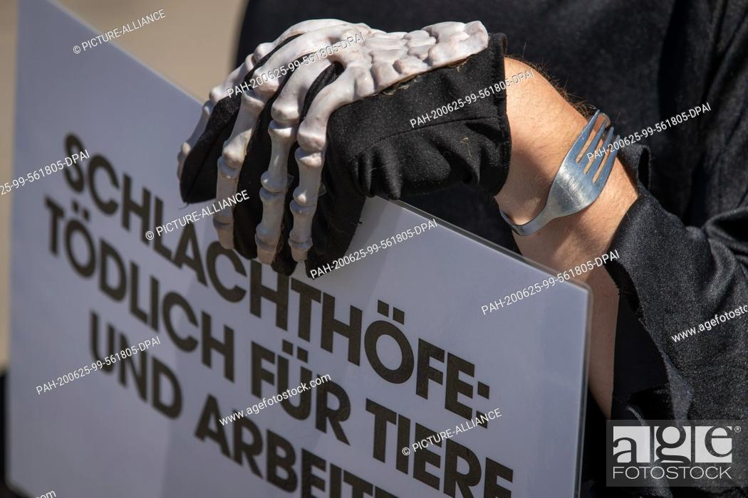 Stock Photo: 25 June 2020, Lower Saxony, Dissen: The activist of the animal protection organization Peta, dressed with a glove with skeleton imprint.