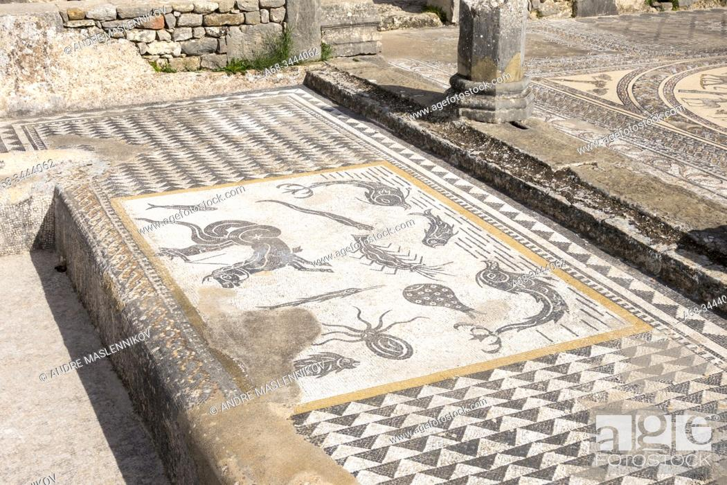 Stock Photo: Volubilis, UNESCO world heritage site. Morocco. The ruined Roman city of Volubilis is the best-preserved archaeological site in Morocco.