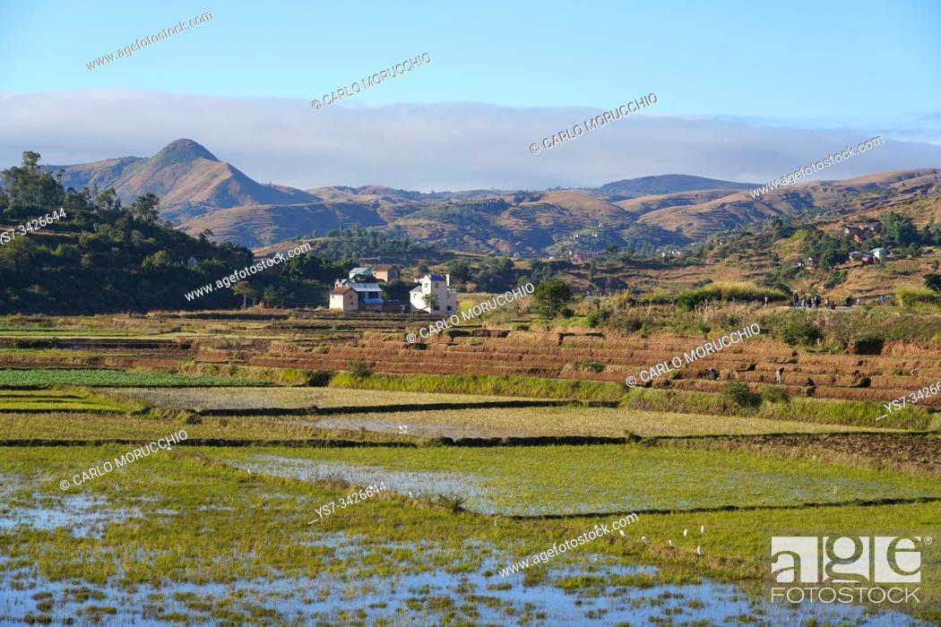 Stock Photo: Landscape on the RN34 route close to Antsirabe, Central Madagascar.