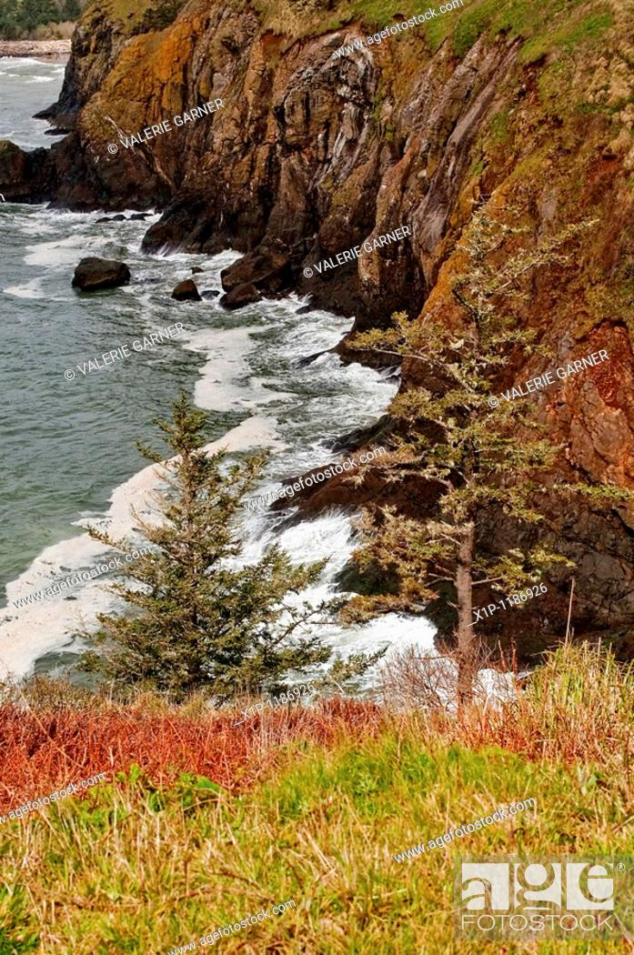 Stock Photo: This beautiful seascape is the Pacific Ocean on steep cliffs in Washington State near Cape Disappointment Waves are hitting the rocks at the bottom of the.
