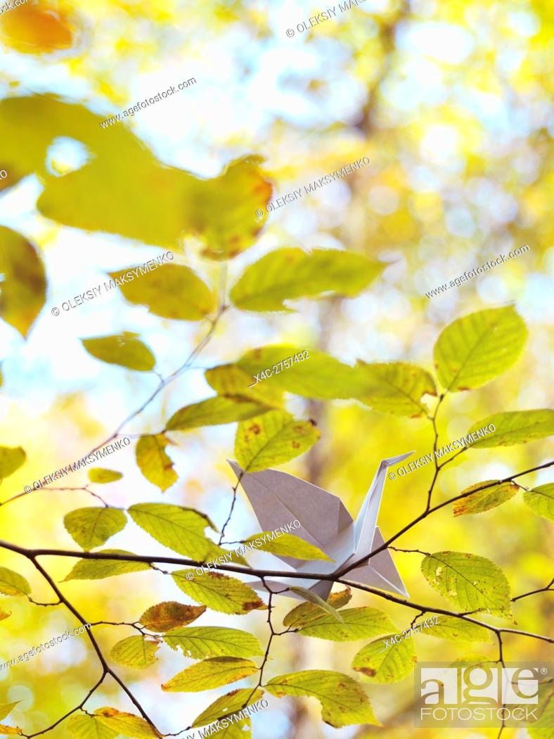 Stock Photo: Origami paper crane sitting on a branch with yellow leaves in autumn nature.