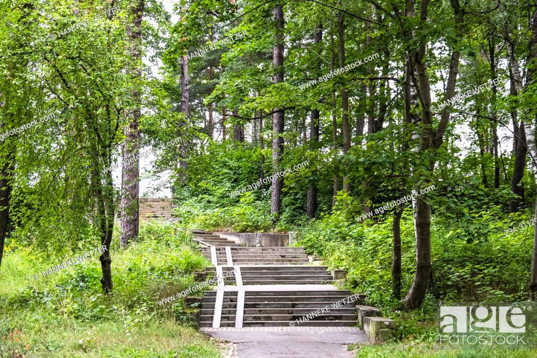 Photo de stock: Path through the forest of Jurmala, Latvia, Europe.
