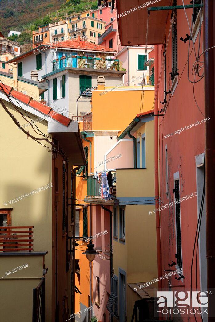 Imagen: Street in Manarola. Cinque Terre.