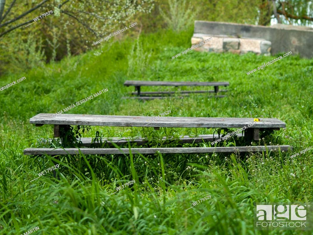 Stock Photo: Wooden tables and benches in a picnic area between the grass.