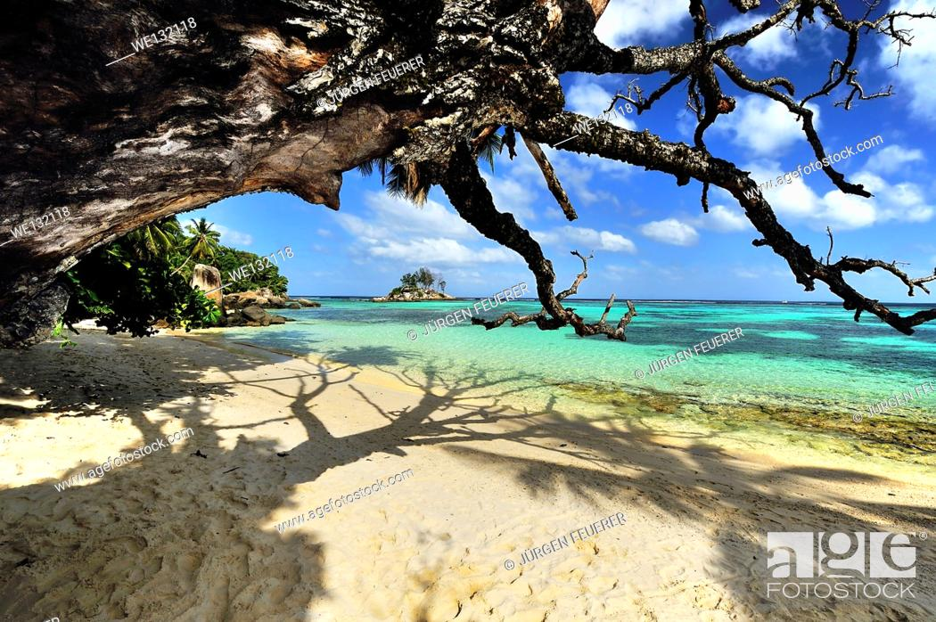 Stock Photo: Beach on Island Mahé, Anse Royale, Seychelles.