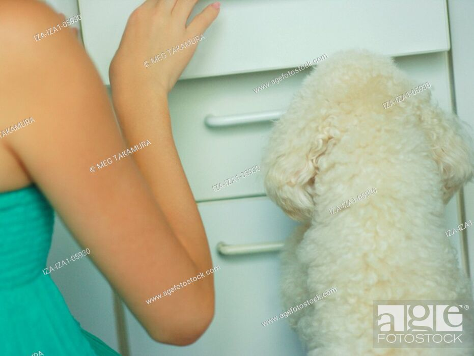 Imagen: Mid section view of a woman with a miniature poodle.