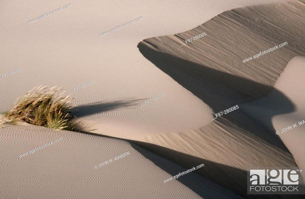 Stock Photo: Coastal sand dunes. Oregon Dunes National Recreation Area. Southern Oregon, USA.