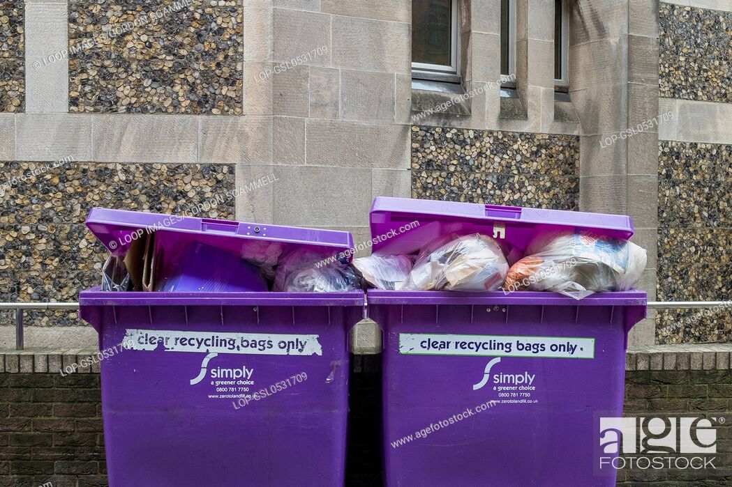 Stock Photo: Purple recycling bins.