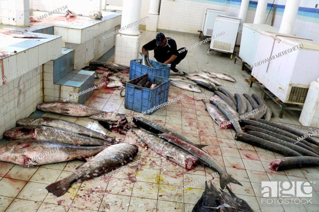 Stock Photo: mercato del pesce, nizwa, oman, asia.