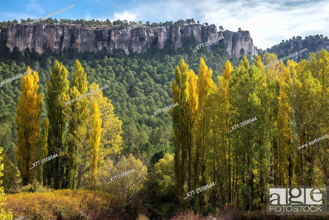 Stock Photo: Autumn in the Hoz Del Beteta gorge. In the Serrania de Cuenca, Cuenca province, Castilla-la mancha, Central Spain.