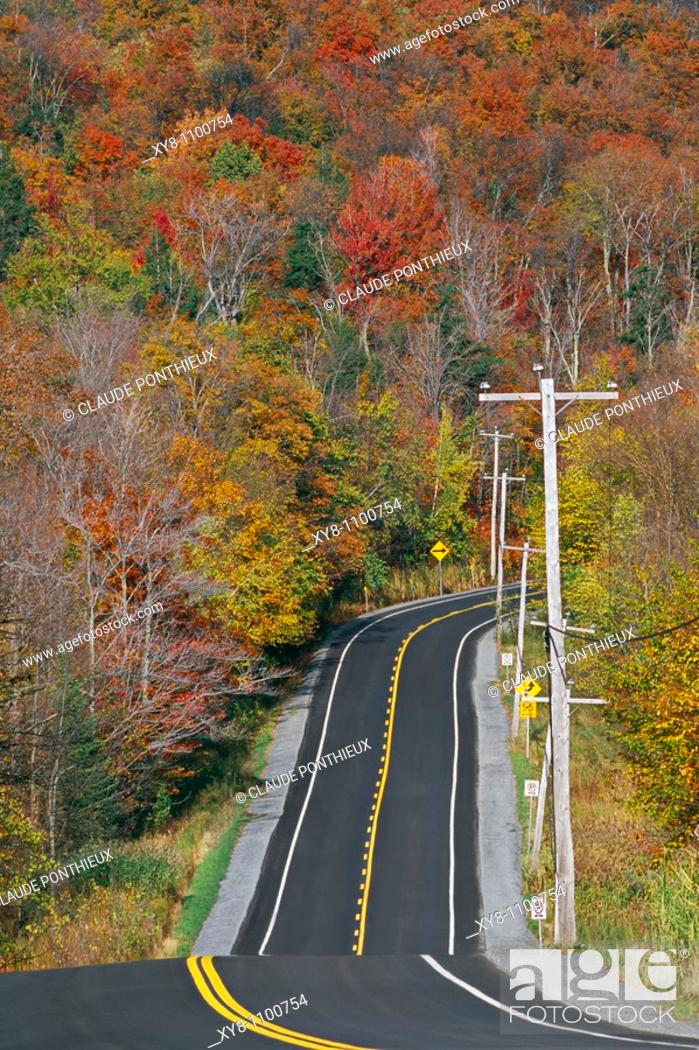 Stock Photo: Road-and-Forest, Mt-Orford-National-Park, Québec, Canada.