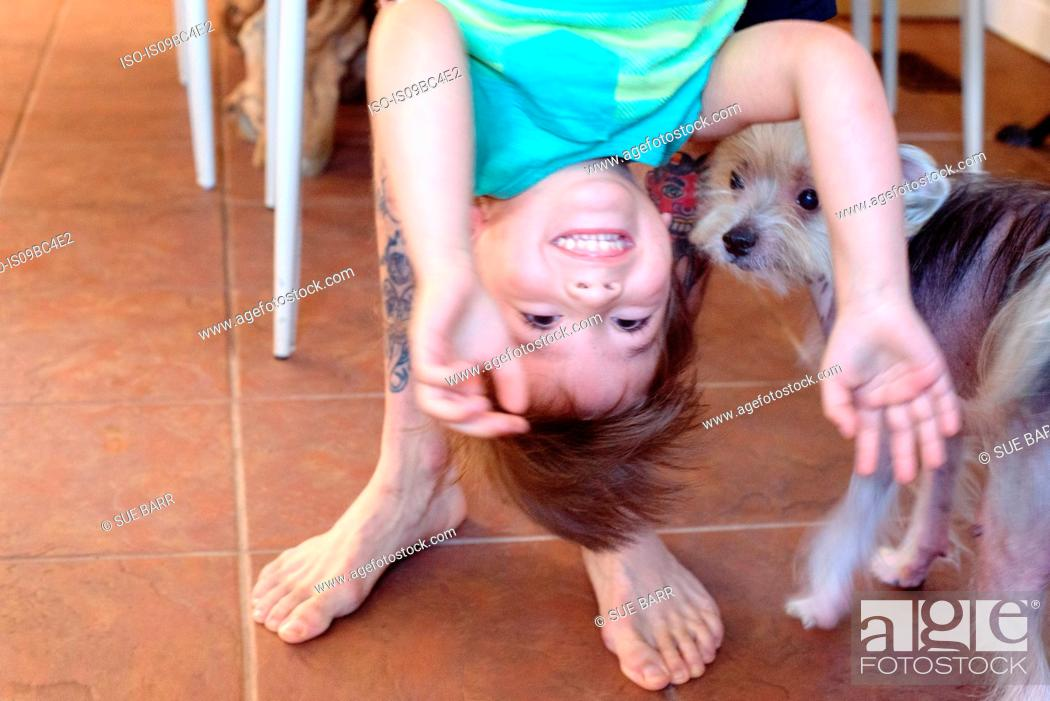 Stock Photo: Boy being held upside down, dog looking on.