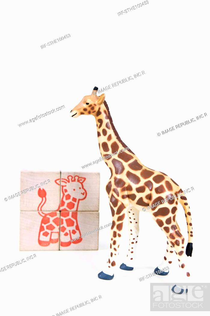 Stock Photo: animal shape and block.