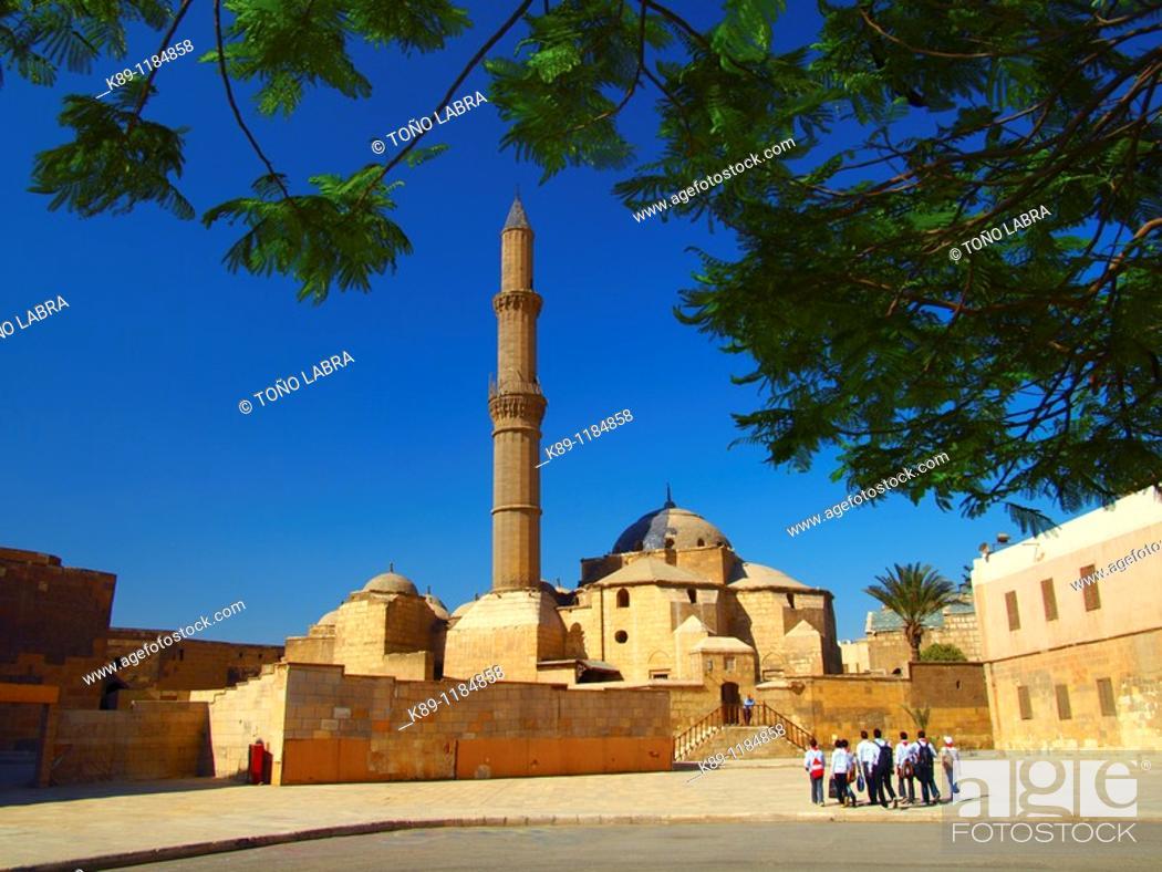 Stock Photo: Pasha Sulayman Mosque , Citadel , Cairo , Egypt.
