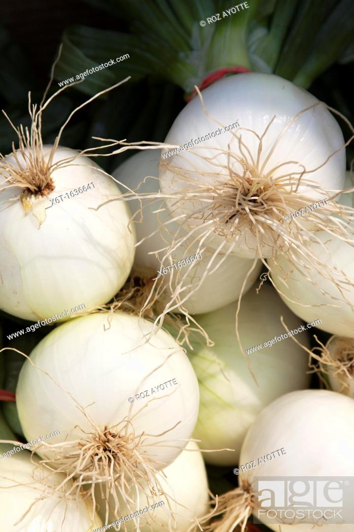 Stock Photo: Close-up of white onions with greens attached for sale at a farmer's market.