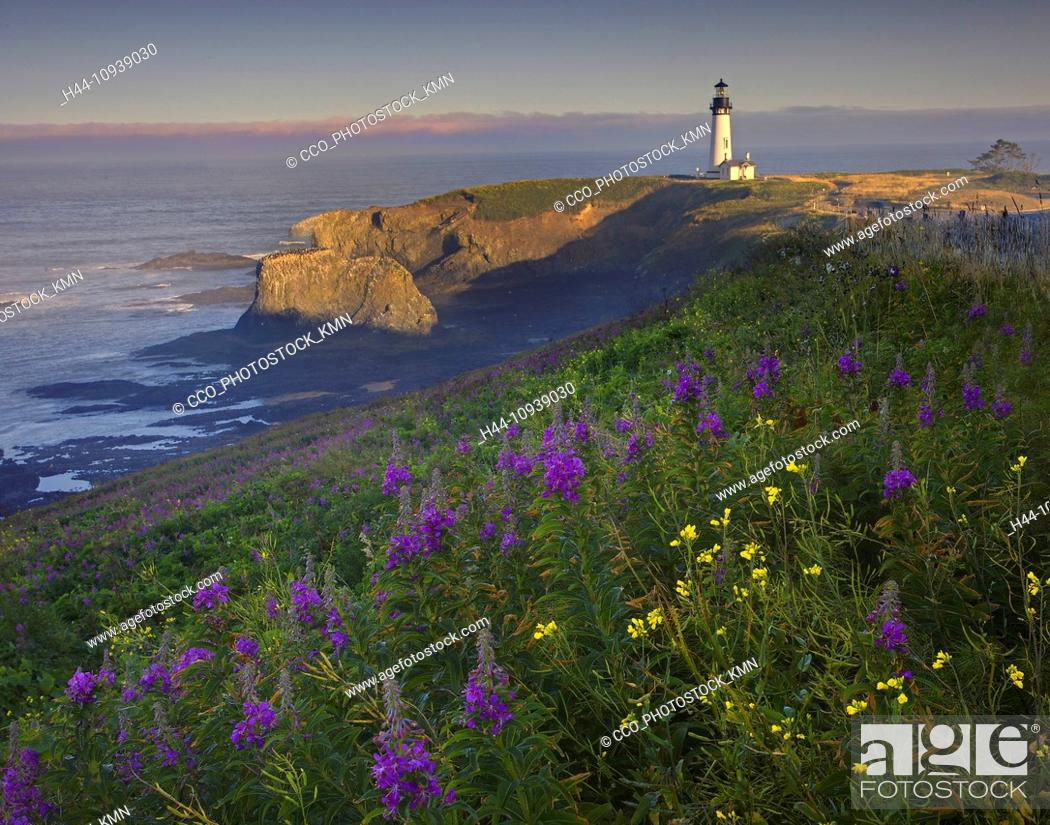 USA, United States, America, Oregon, Boiler Bay, Coast, Coastline ...