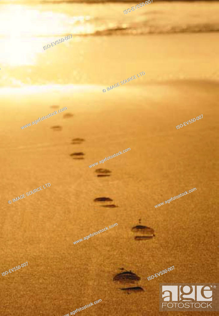 Stock Photo: Footprints in sand.