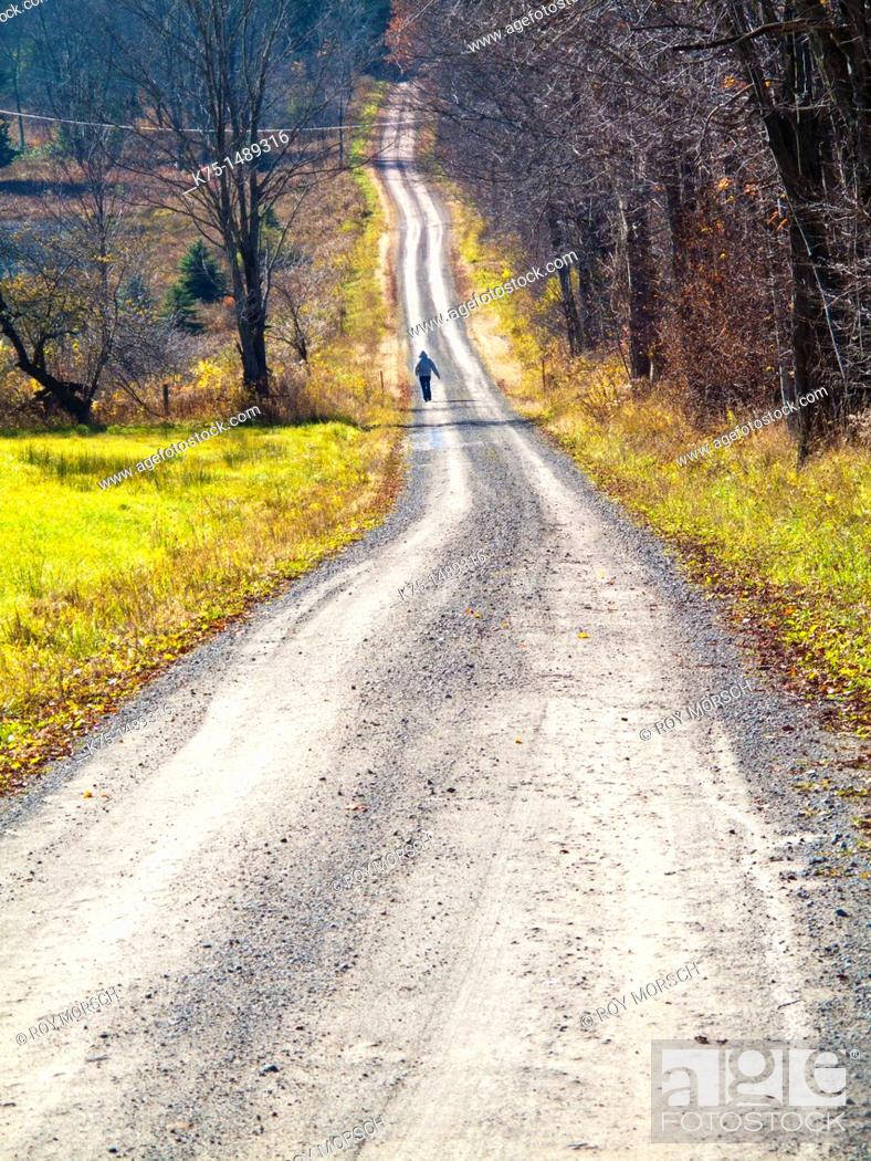 Stock Photo: Walking on country road.
