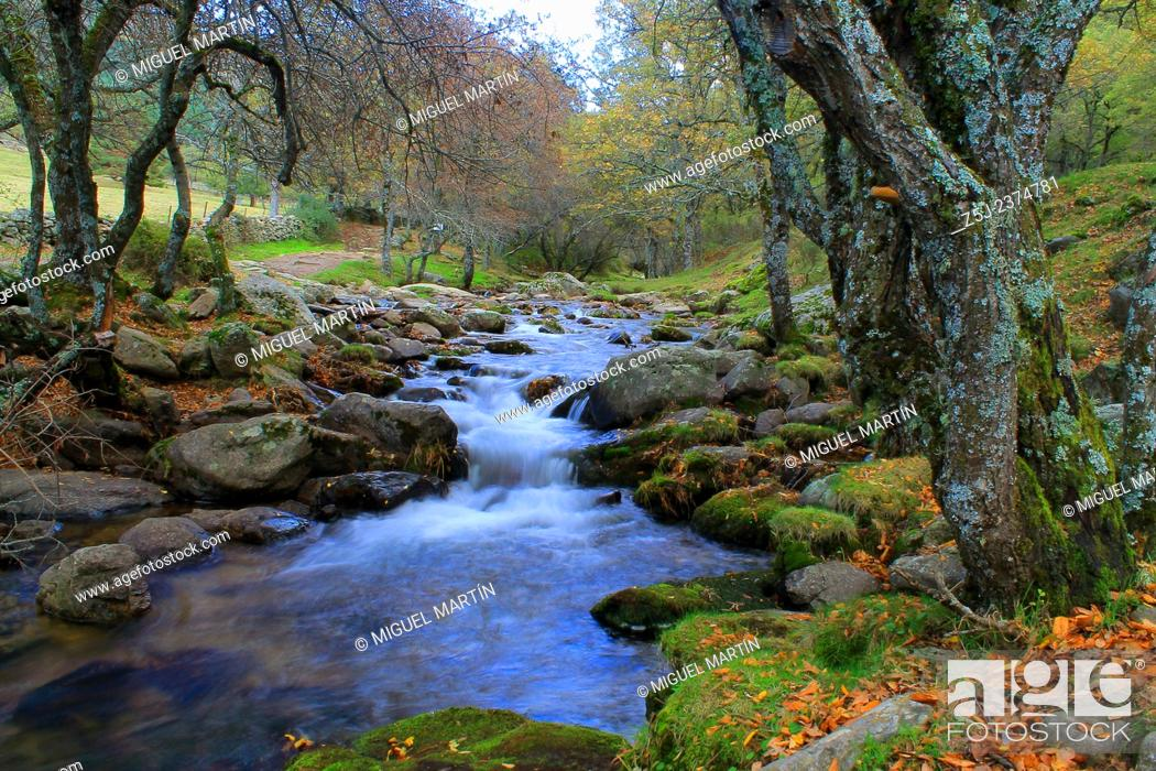 Stock Photo: The Aguilón river, as seen from the second bridge on the trekking route from El Paular to El Purgatorio falls, near the Sierra de Guadarrama national park.