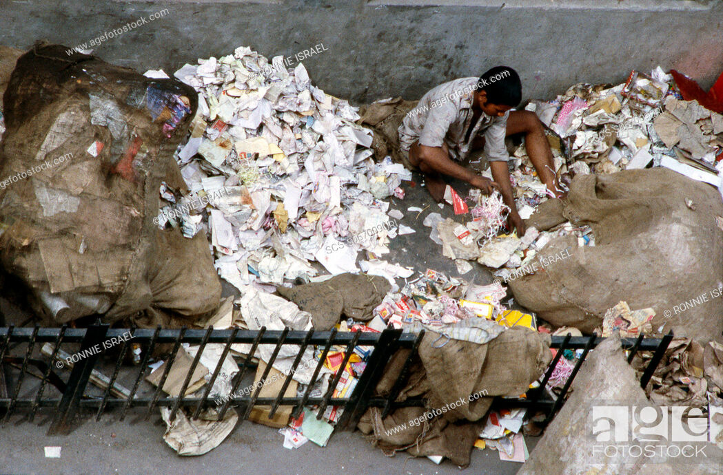 Stock Photo: Sorting through waste paper India.
