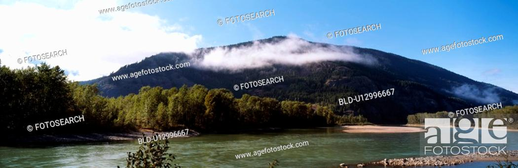 Stock Photo: tree, sky, forest, riverside, river, panorama.