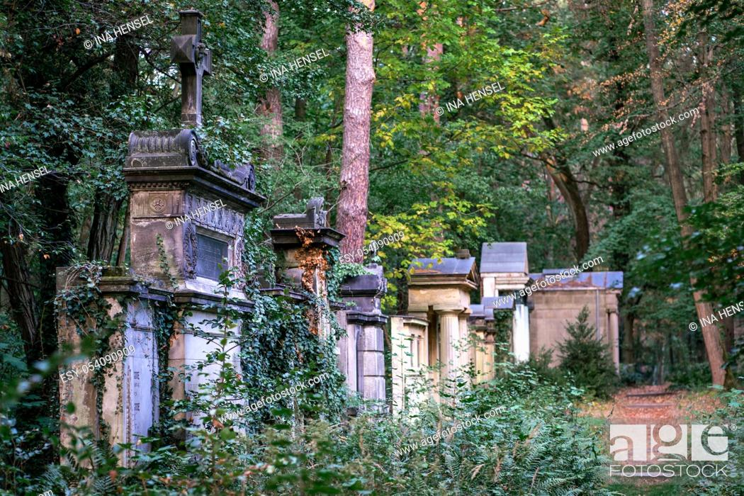 Stock Photo: Weathered old tombstones on the Suedwest Kirchhof cemetery in Stahnsdorf, Germany in the woods.