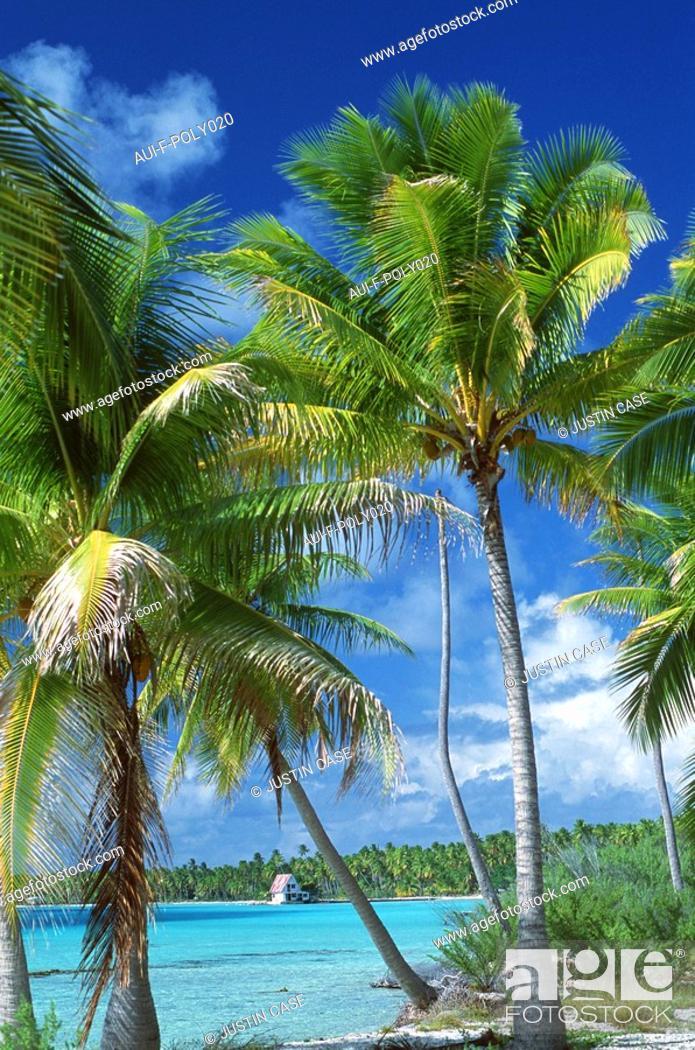 Stock Photo: French Polynesia - Papete.