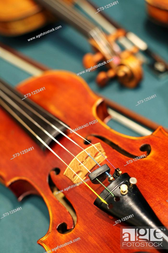 Stock Photo: Violin details.