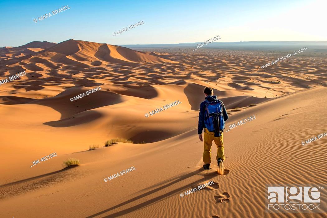 Stock Photo: Young man walks on a sand dune, dune landscape Erg Chebbi, Merzouga, Sahara, Morocco.