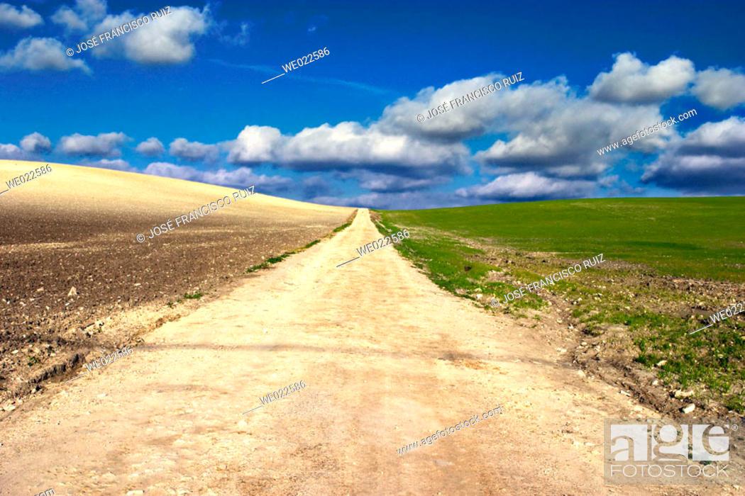 Stock Photo: Dirt road.