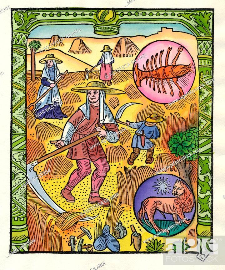 Calendario Lunare Segni Zodiacali.Calendario Il Mese Di Luglio Sulla Destra Sono Raffigurati