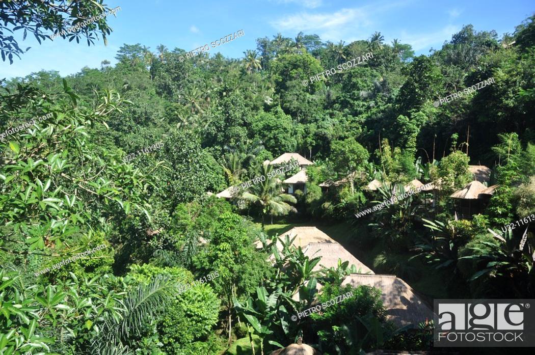near Ubud (Bali, Indonesia): the Ubud Hanging Gardens Hotel, Stock ...