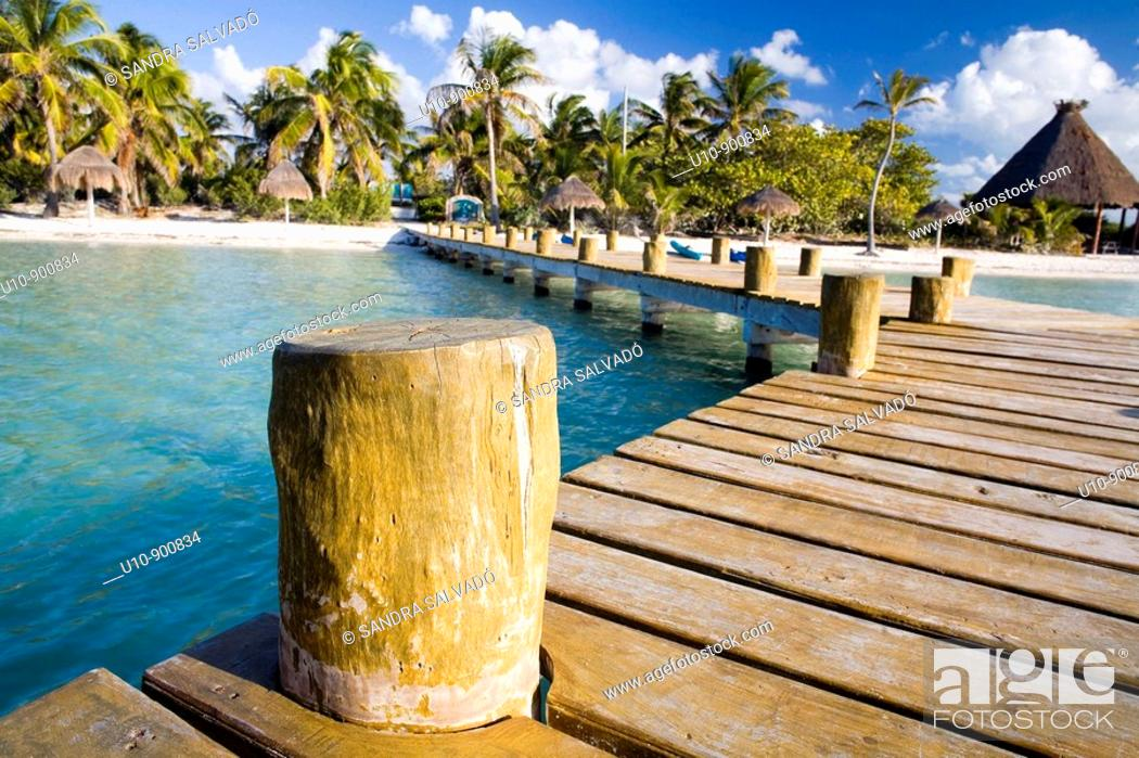 Stock Photo: Isla Contoy, Cancún, Yucatán. México.