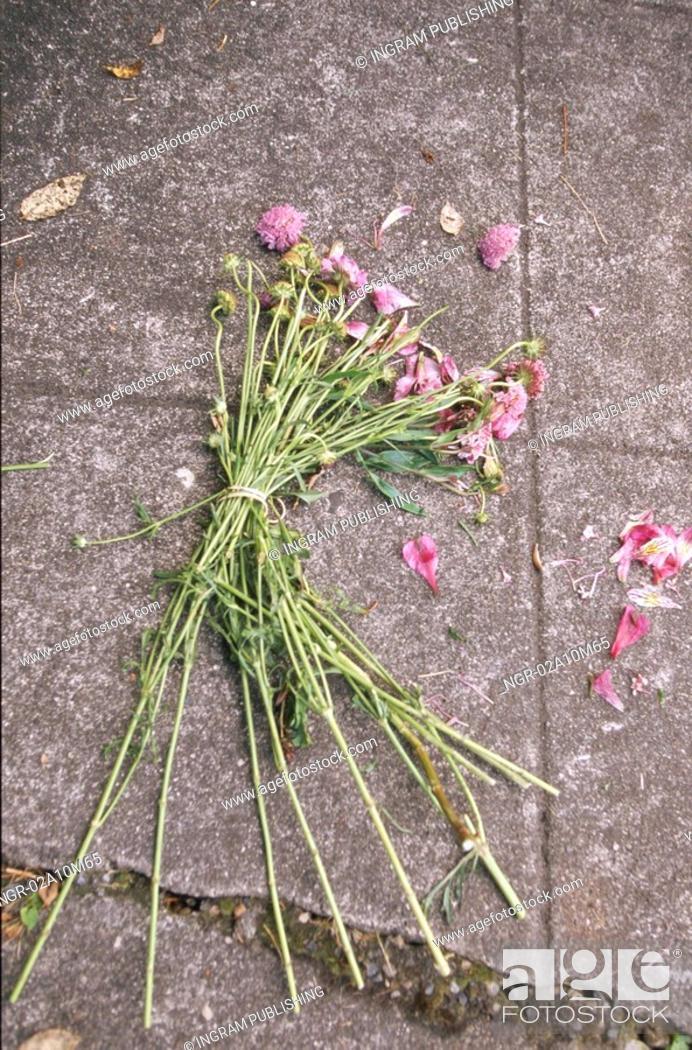 Stock Photo: Dead Bouquet on Sidewalk.