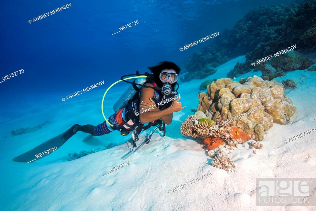 Stock Photo: Male scuba diver look on litle coral reef on sandy bottom, Indian Ocean, Maldives.