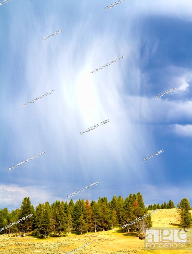 Stock Photo: Stormy rainy clouds in Hayden Valley.