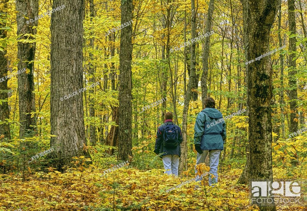 Stock Photo: Two young people walking along a maple trees forest trail in autumn, Frontenac National Park; Québec, Canada.