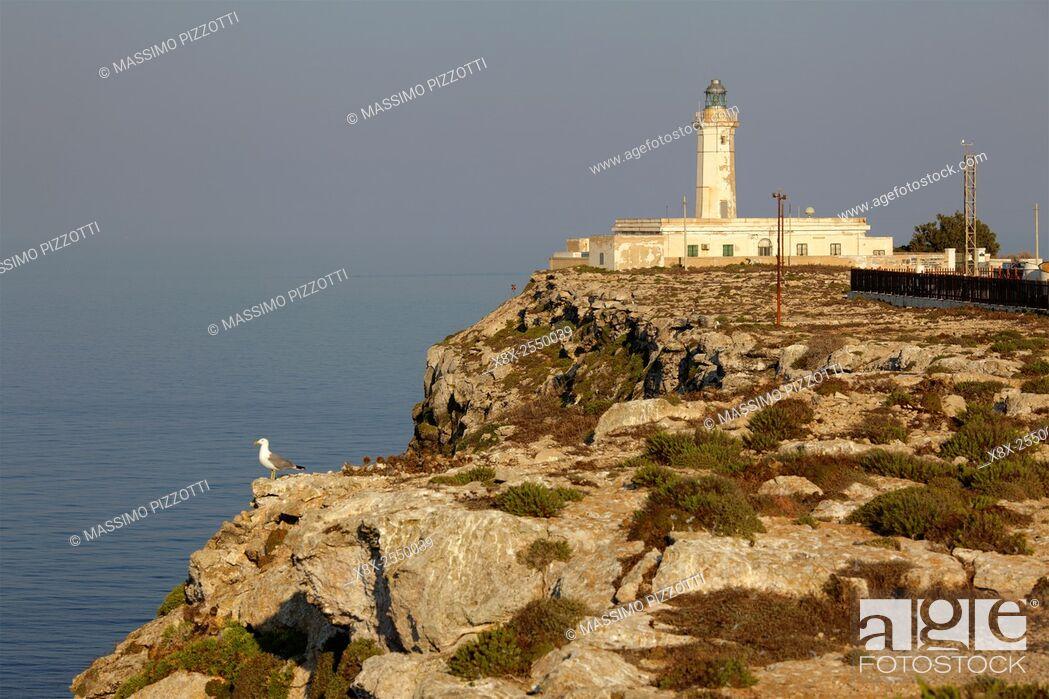 Photo de stock: Lampedusa lighthouse, Sicily, Italy.