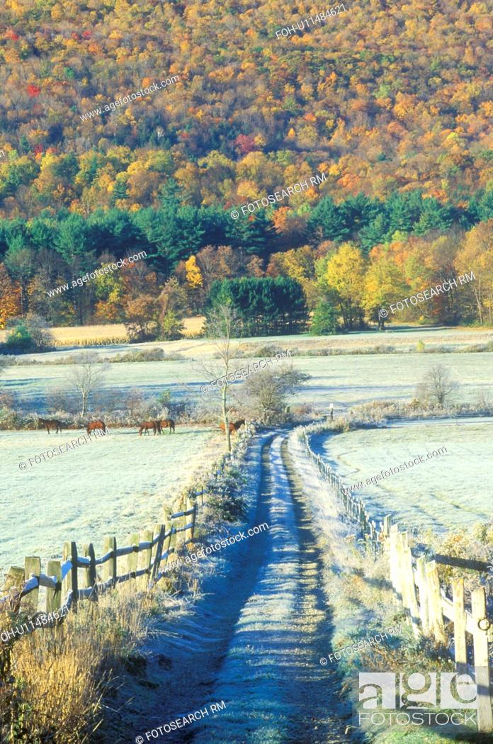 Stock Photo: A dirt road with morning autumn frost in Tyringham, Massachusetts.