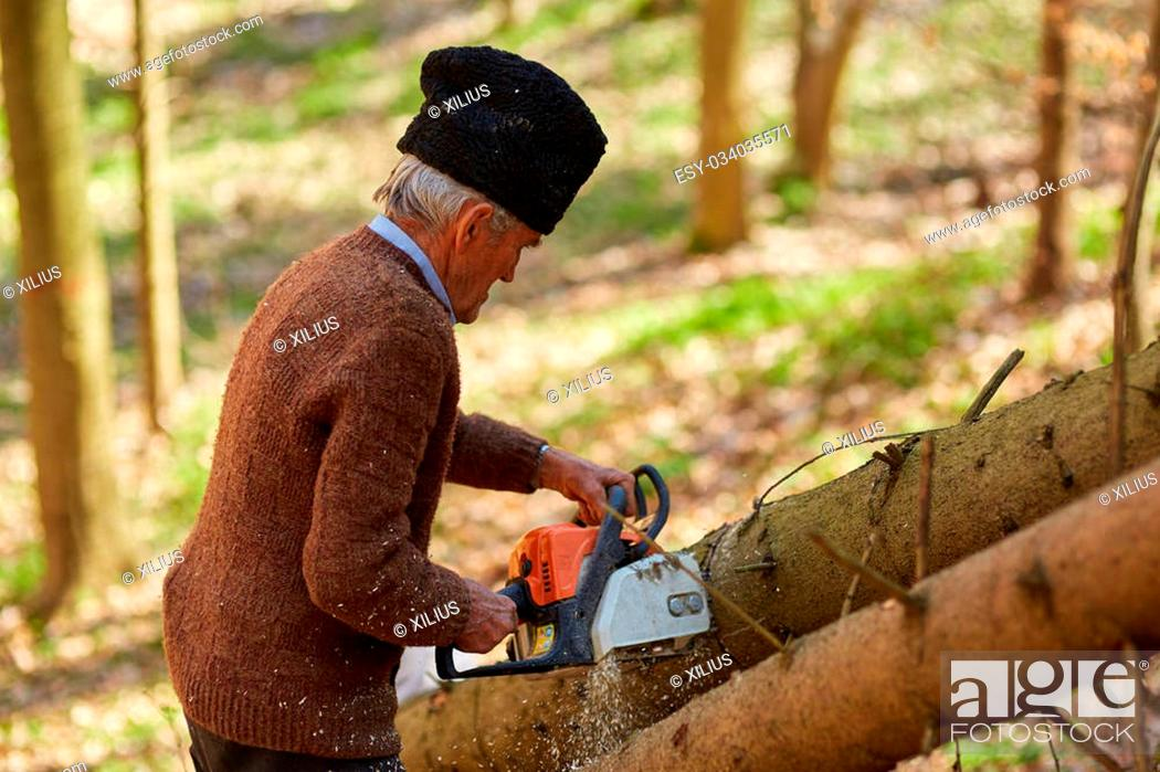 Stock Photo: Senior caucasian man woodcutter cutting down trees with chainsaw.