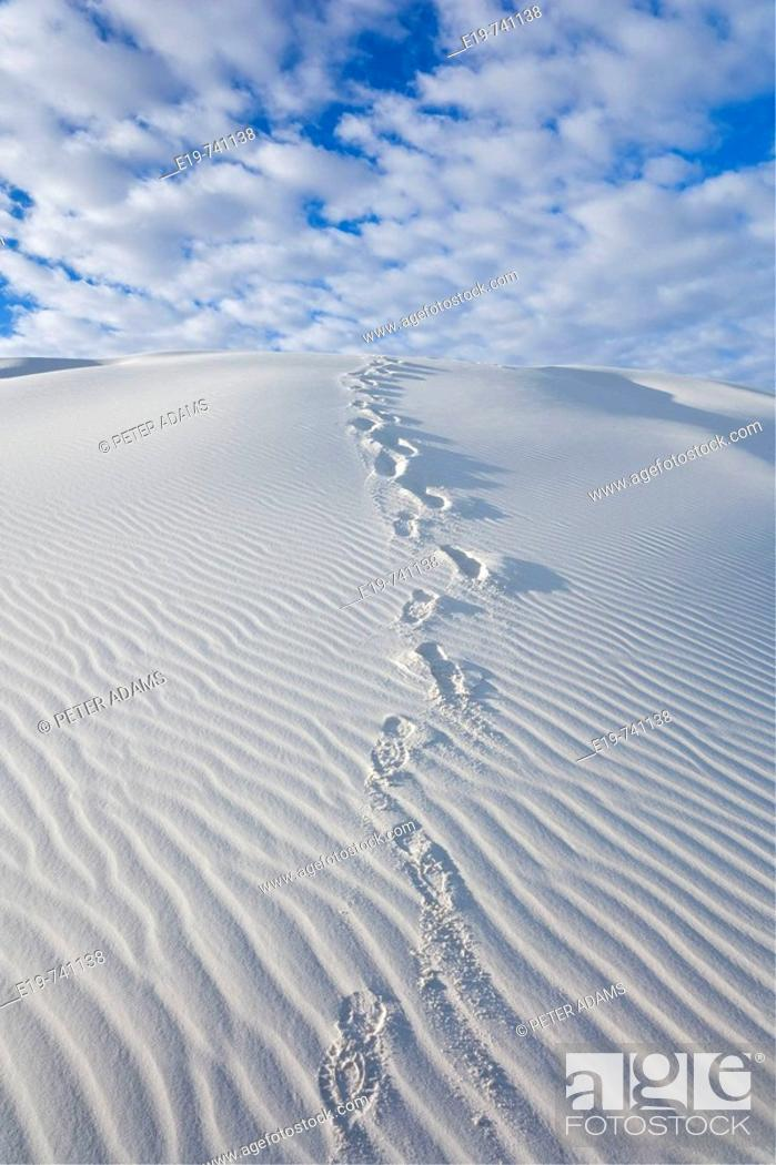 Stock Photo: White Sands National Monument, New Mexico, USA. White gypsum sand dunes & footprints.