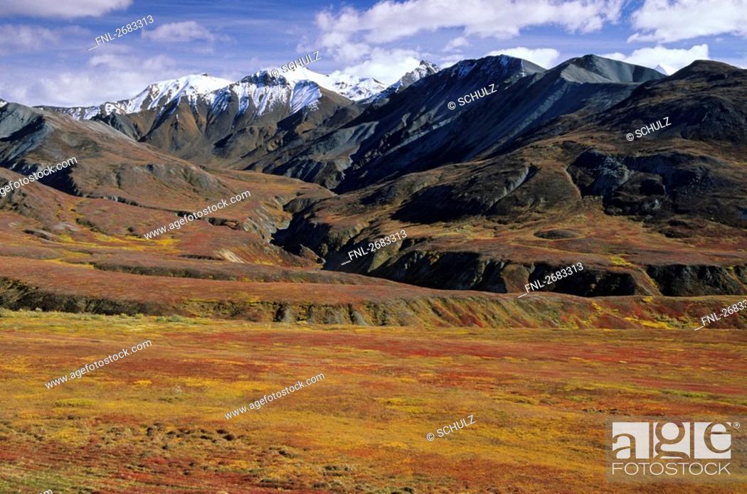 Photo de stock: Panoramic view of mountain range, Denali National Park, Alaska, USA.