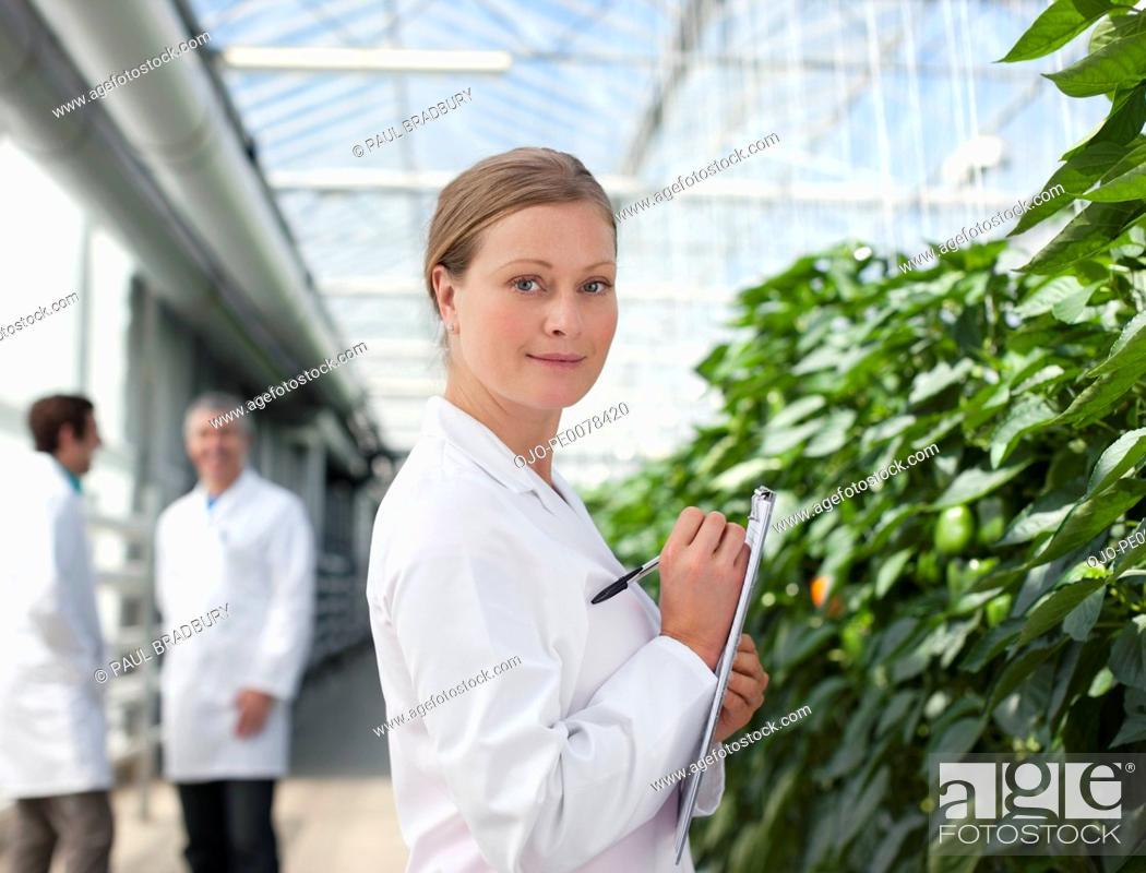 Stock Photo: Scientist examining plants in greenhouse.