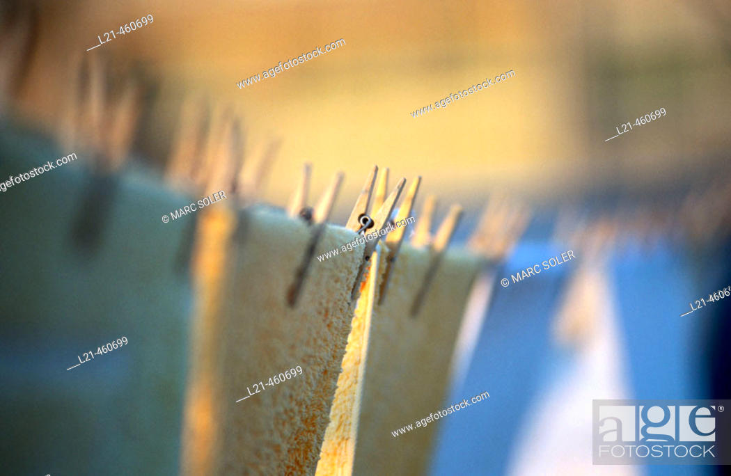 Stock Photo: Clothespins.