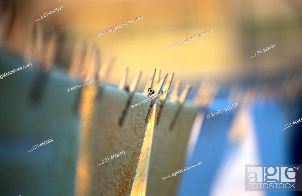 Stock Photo: Clothespins.